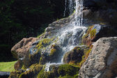Waterfall in the forest — Stock Photo