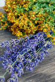 Background of lavender and St John's wort — Stock Photo