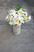 Spring bouquet of white daisies — Stock Photo