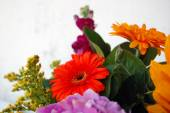 Beautiful bouquet of colorful summer flowers — Stock Photo