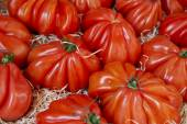 Giant tomatoes in a market — Stock Photo
