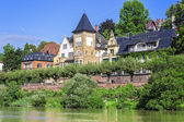 Live at the river neckar in germany — Stock Photo