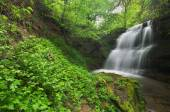 Waterfall in the forest of Bulgaria — Stock Photo