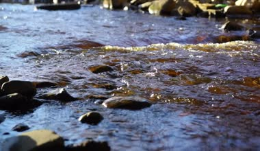 Wild river stream with splashes in sunny day — Stock Video