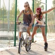 Group of friends with roller skates and bike riding in the park. — Stock Photo #53779341