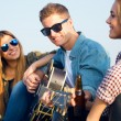 Portrait of group of friends playing guitar and drinking beer. — Stok fotoğraf #58107475