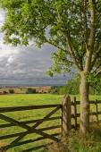 Lincolnshire Fens,UK — Stock Photo