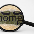 Search for home — Stock Photo #52386731