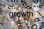 Growth concept — Foto de Stock