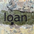 Loan concept — Stock Photo #54325909