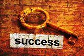 Concetto di successo — Foto Stock