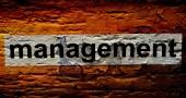 Management text on grunge background — Fotografia Stock
