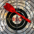 Seo target concept — Stock Photo #62887865