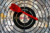Skills target concept — Stock Photo