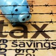 Piggy bank and tax concept — Stock Photo #71280837