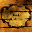 Goal concept against barbwire — Stock Photo #78431044