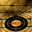 Seo target concept against barbwire — Stock Photo #79010560