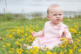 Baby is playing with the flowers — Stock Photo