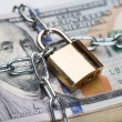 Chain Around Dollar Bundle — Stock Photo #58793351