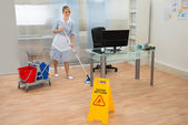Housemaid with cleaning the mop — Stock Photo