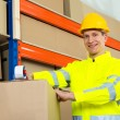 Worker Sealing Cardboard Box With Adhesive Tape — Stock Photo #79915488