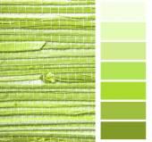 Grasscloth обои цвет диаграммы палитра «образцы» — Стоковое фото