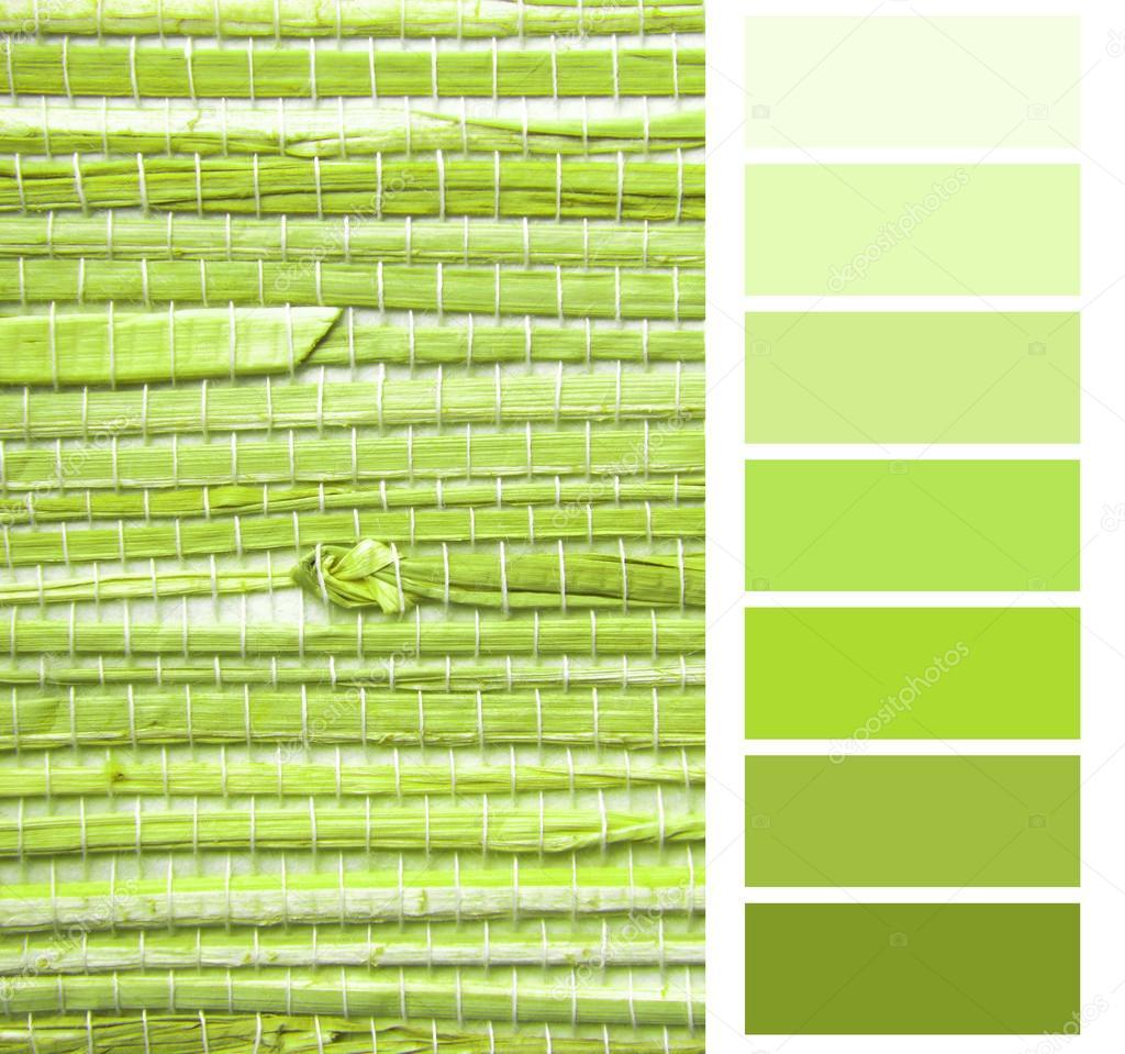 Grasscloth 벽지 색상 차트 색상표 견본 — 스톡 사진 © severija #55000939