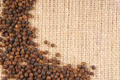 Black pepper on hessian fabric frame — Stock Photo