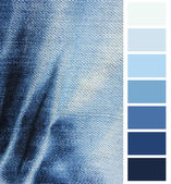Blue denim jeans  color complimentary chart — Stock Photo
