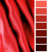 Complimentary color palette chart — Stockfoto