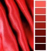 Complimentary color palette chart — Foto de Stock