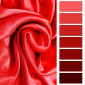 Red color selection complimentary chart palette — Stock Photo