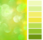 Complimentay color chart decorating planning — Stockfoto