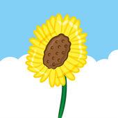 Sun flower background — Stock Vector