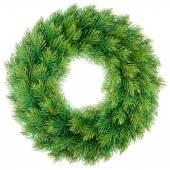 Christmas wreath isolated — Stock Photo