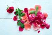Fondo de pétalos de rosa — Foto de Stock