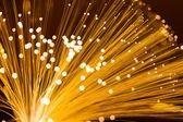 Optical fibre in golden color — Stock Photo