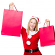Woman with shopping bags — Stock Photo #57237605