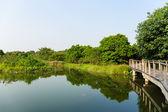 Lake and bridge — Stock Photo