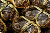 Chinese hairy crabs — Stock Photo