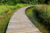 Footbridge through wetland — Stock Photo