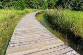 Wooden bridge in forest — Stock Photo