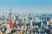 Tokyo city in Japan — Stock Photo