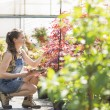 Supervisor examining plants — Stock Photo #57278921