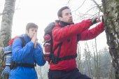 Hikers exploring tree trunk — Stock Photo
