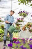 Man watering flower plants — Photo