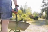 Gardener pushing wheelbarrow — Stock Photo