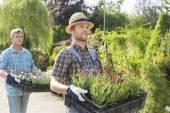 Gardeners carrying flower pots — Fotografia Stock