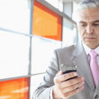 Businessman using smart phone — Stock Photo #57280037