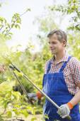 Gardener clipping tree branches — Stock Photo